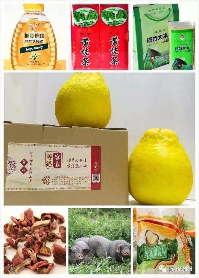 免费品尝长寿山货!1月9日蕉岭山货特产文化节约定您!