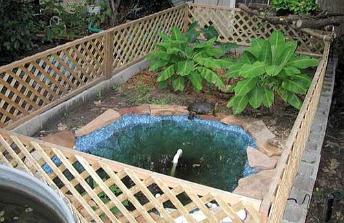 2014阳台龟池设计图_仿野生龟池设计_仿野生龟池设计分享展示