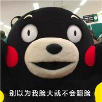 熊本熊微信表情包 别以为我萌就可以随便欺负我图片