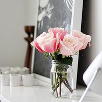 清新的花朵唯美个性头像图片