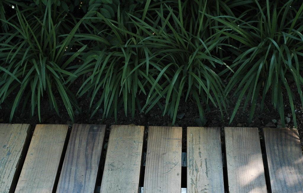高清防腐木贴图素材