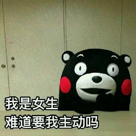 熊本熊耍流氓微信表情图片