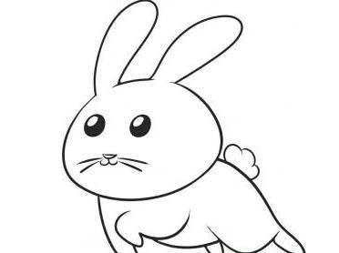 可爱的小兔子简笔画