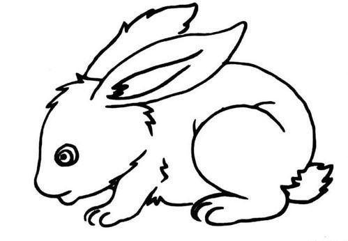 可爱兔子的简笔画