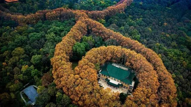 南京美龄宫项链图片