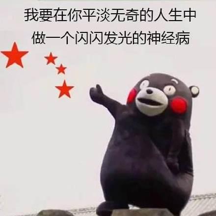 熊本熊520表白表情包图片