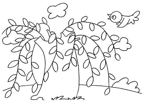 春天发芽的柳树简笔画