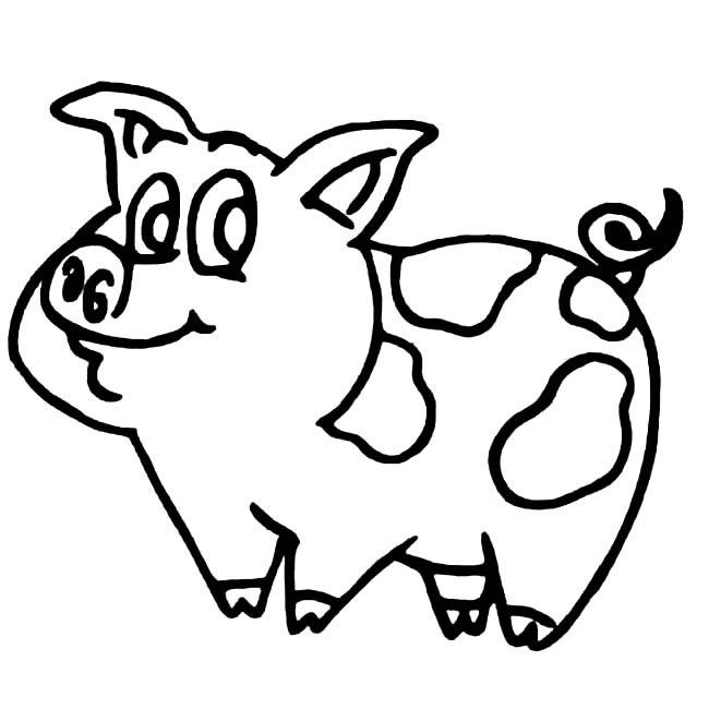 动物简笔画栏目里的 小花猪简笔画 图片大全