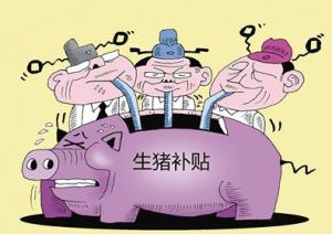 猪肉进口又增多了!51个县市将获得养猪环保补贴!