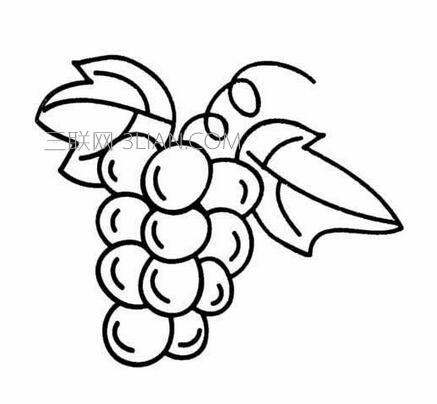 一串葡萄怎么画简笔画-爱词吧