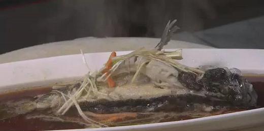 鱼的养殖新技术鱼住别墅