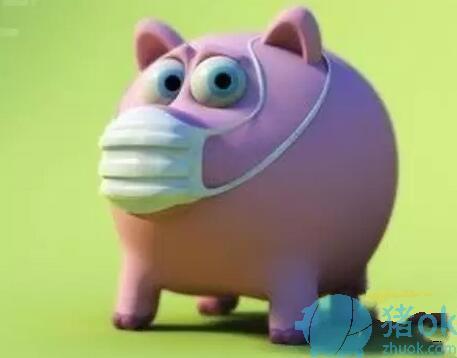 猪流感是小病可不能小看啊