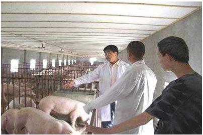 养猪人请转变你的思路:环保其实是一个大好机会!