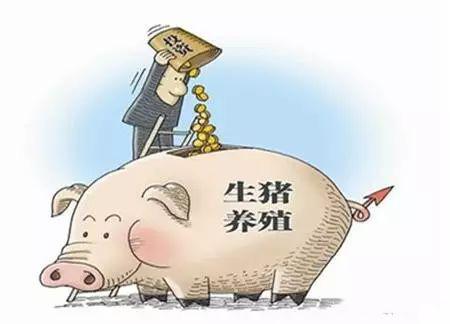 尴尬了,饲料企业蜂拥养猪,猪价下跌拖累业绩其下降!