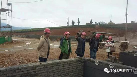 鲜氏猪场 不一样的家——铁骑力士猪场设计专家鲜志刚专访