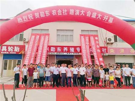 降低猪场育肥成本50-70元/头,山东通威首家农合社正式启动