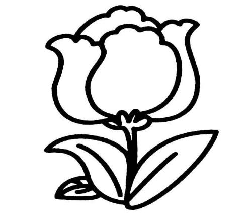 花朵简笔画_卡通花朵简笔画_美丽的花朵简笔画_花朵图片 -简笔画