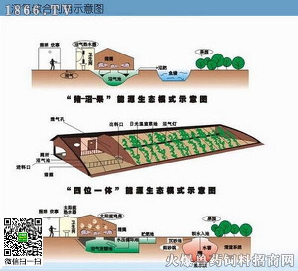 养猪场沼气池设计图和如何综合使用沼气