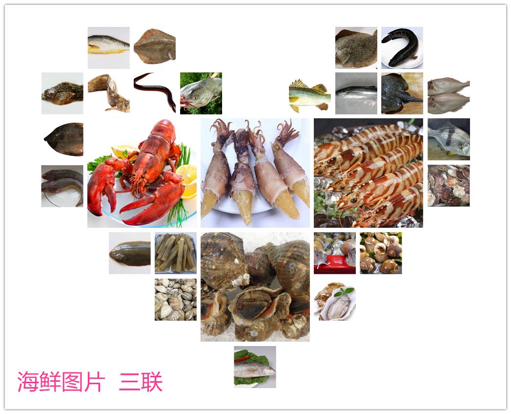 海鲜还有很多种,下面我们就来欣赏海鲜图片,看看都有哪些海鲜.