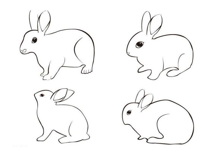 玉兔简笔画