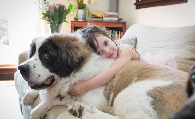 小孩和动物图片唯美