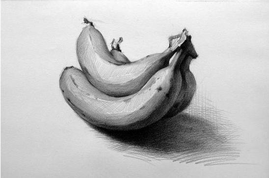 画的时候,静物一动不动是最好的摆设,而且描绘出来的静物素描才是最真