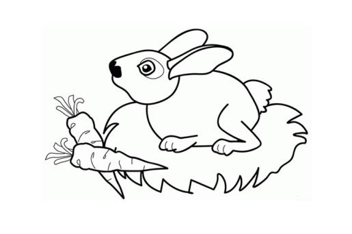 简笔画兔子