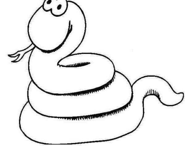 阅读频道 简笔画  蛇这种冷血爬行动物我想没有人会很喜欢吧,看着蠕动