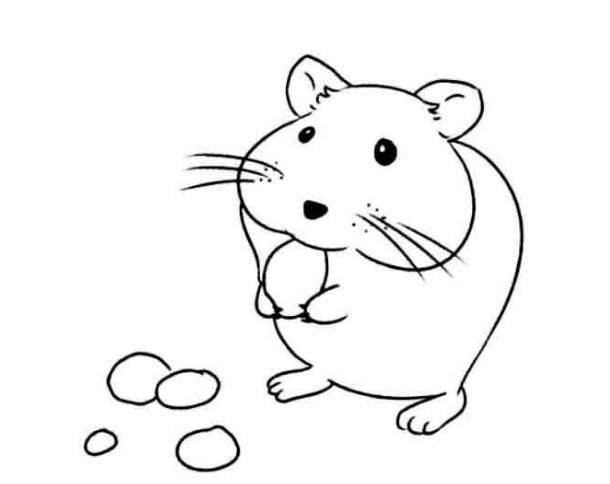 可爱小老鼠简笔画