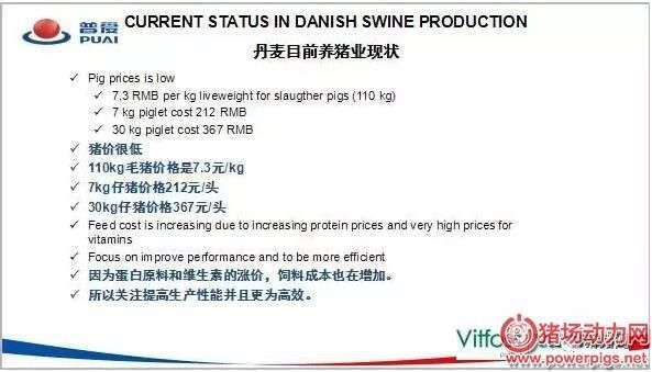 为何丹麦的养猪业水平一直遥遥领先?