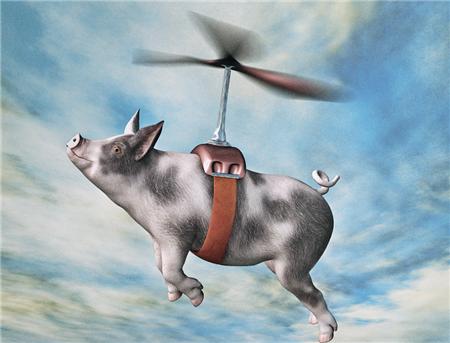 中国养猪户注意,2018将是世界养猪业的好年头!