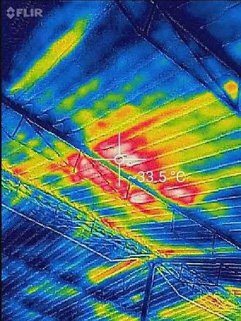 红外线成像设备在猪场的应用点