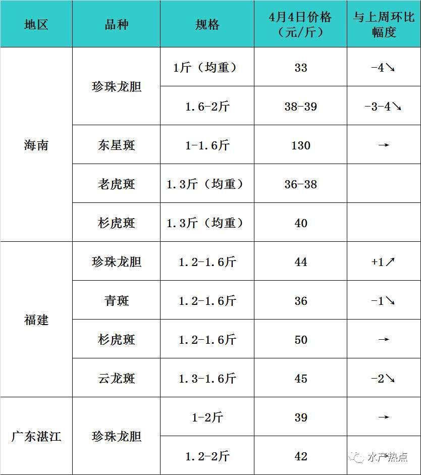 """最高下跌4元/斤!石斑鱼清明节开始""""亲民"""""""