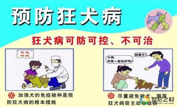 猪伪狂犬病的治疗方法与防治要点 (1)