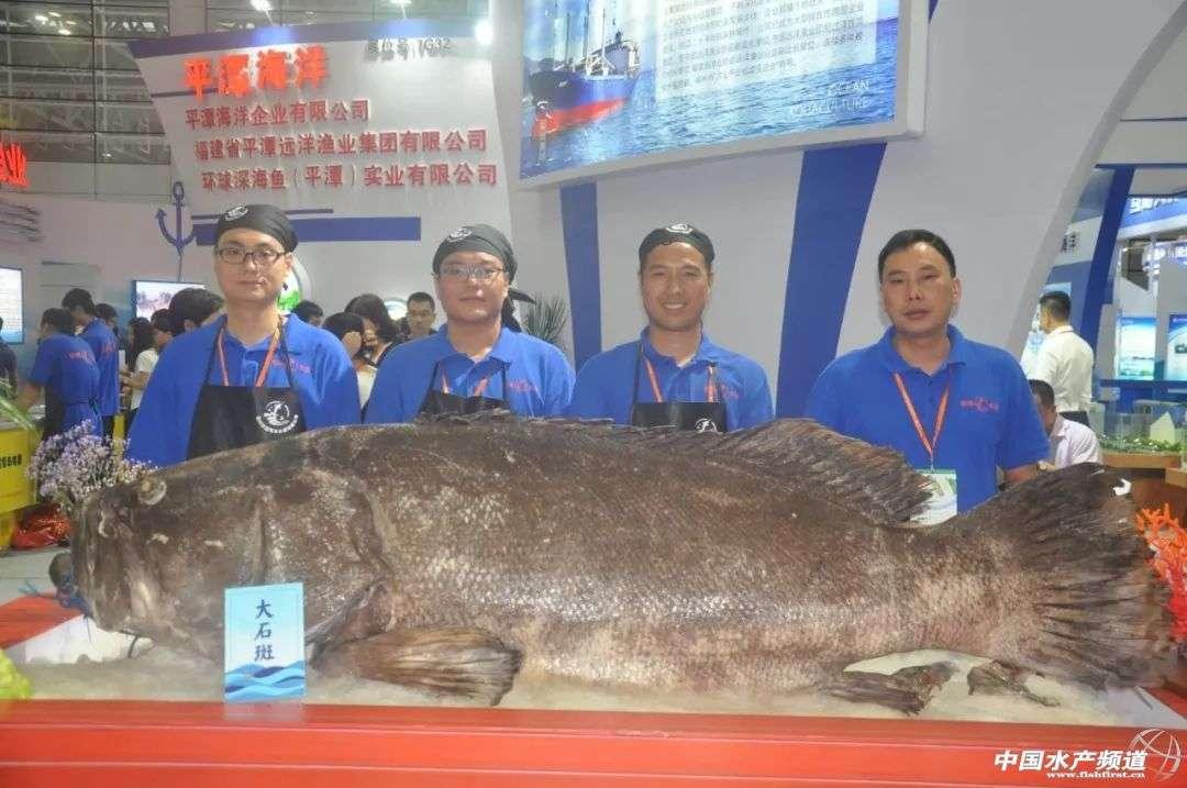 福州渔博会昨日盛大开幕!多国展商组团参展,开启海鲜食材化消费新时代