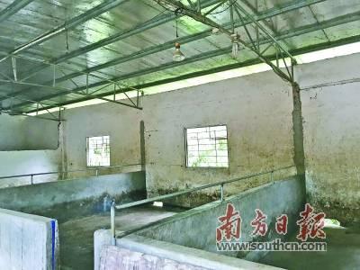 碧桂园·清泉城周边 三家猪场已清理完毕