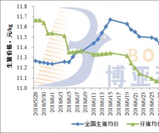 生猪市场供应下降,猪价行情大面积上涨