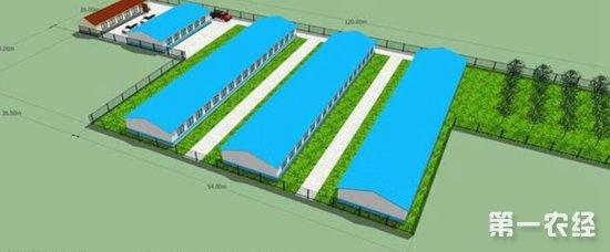 猪场的规划和建设实施性建议