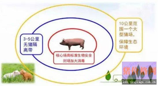 养猪场如何建立防线在疫情逆境求生?