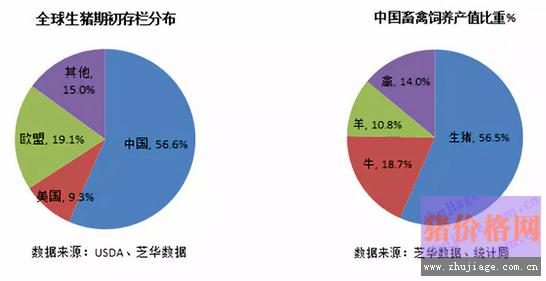 最全中国生猪养殖数据分析,不看别后悔