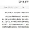 四川猪市浅析:猪价行情春节前还会涨吗?
