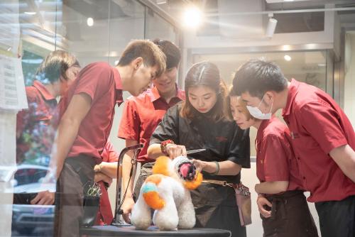 宠物服务与商品零售平台「宠物家Petem」完成亿元新一轮融资