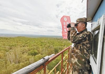 [最美林业故事]用青春守望北疆林海