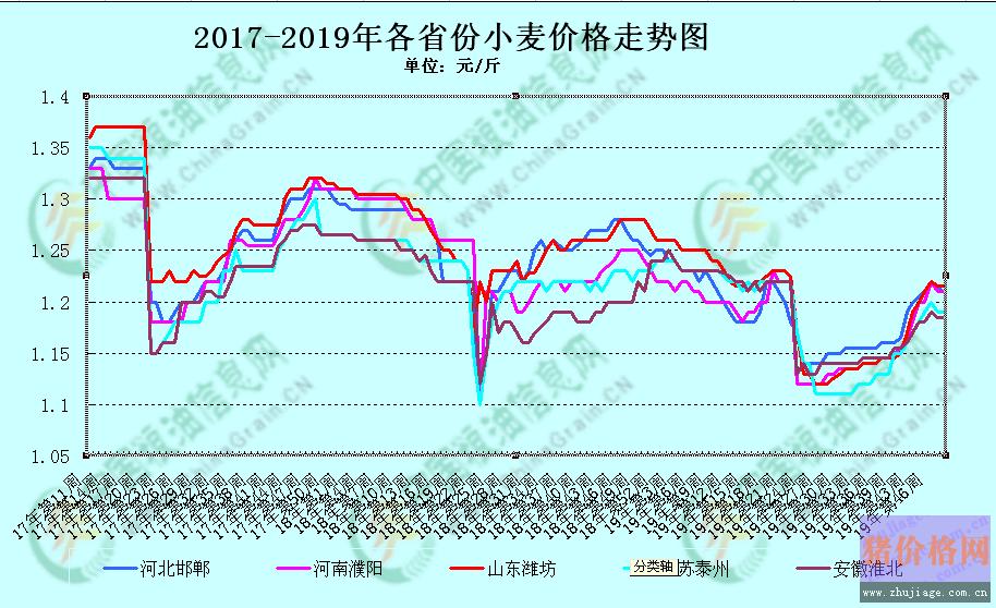 12月份小麦价格行情能否迎来上涨?