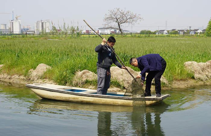 江苏省苏州市:加强产业体系建设 助推吴中区渔业发展