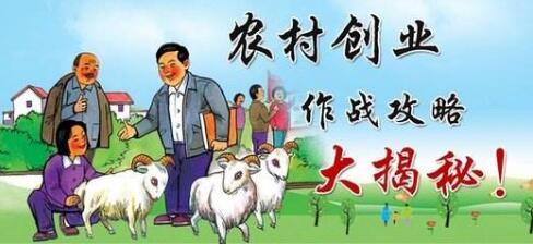 未来农村什么人最赚钱?在农村只有这5种人将最赚钱!