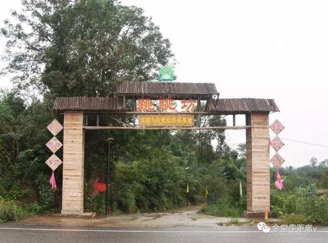 成都最大的青蛙养殖基地