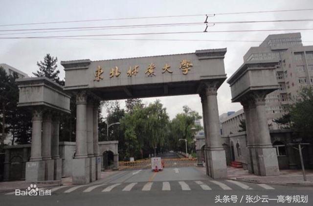 安徽家禽养殖推荐