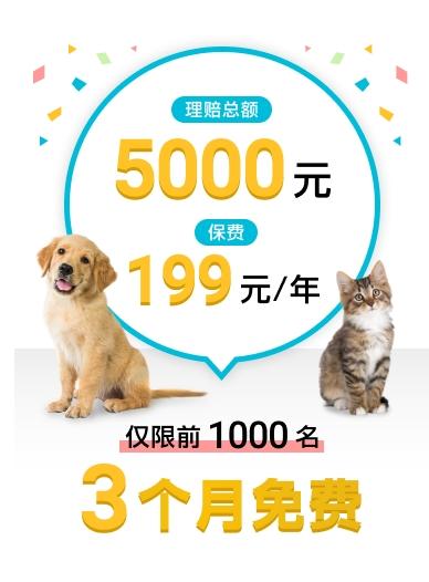 国任保险推出3个月免费宠物医疗保险,从此养宠无忧