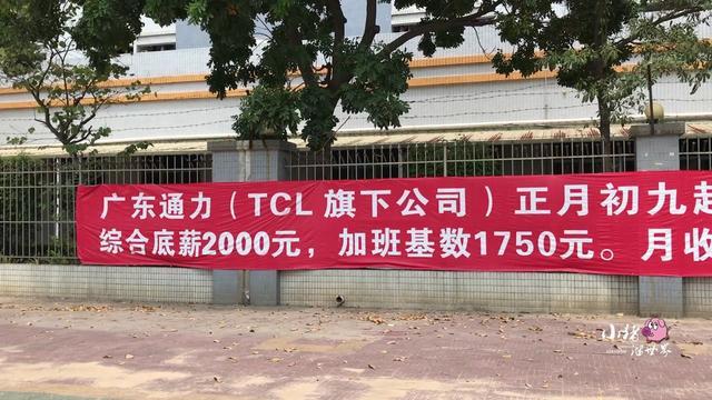 广东东莞养殖场招工 广东蛇养殖场